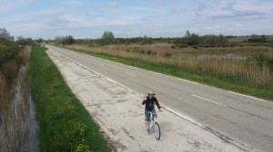 cycling in Camargue