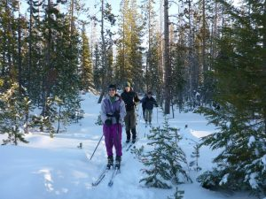 Cross-country skiing near Bend, Oregon
