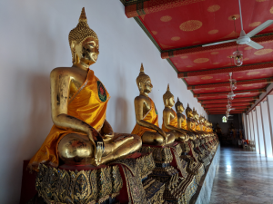 row of golden Buddhas